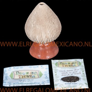growing fiesta chia zaden beeldje